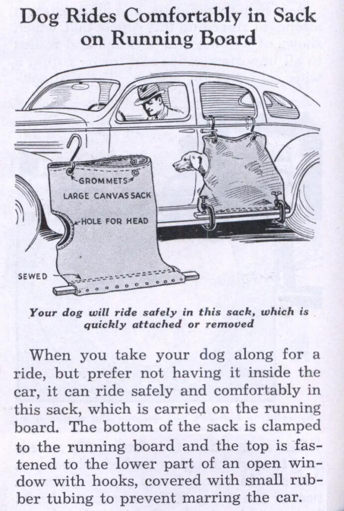 hundepose_til_bilen